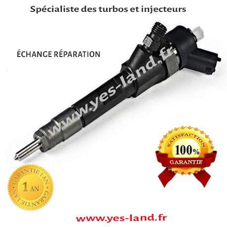 0445110110a 0445110110b injecteur bosch renault megane ii. Black Bedroom Furniture Sets. Home Design Ideas